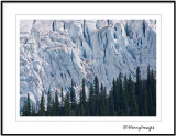 HENRY IMAGES, MT. ROBSON PROVINCIAL PARK  PHOTOGRAPHY, by Brent Henry