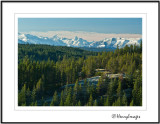 Vancouver Island Mountains and a Frosty Bluff