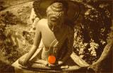 Kalu's Orange Hwadu