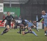 CardiffBlues v Ospreys11.jpg
