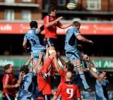 CardiffBlues v Munster13.jpg