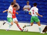 Wales v Bulgaria6.jpg