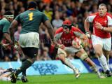 Wales v South Africa9.jpg
