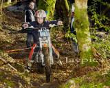 Cwm Woods3.jpg