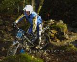 Cwm Woods7.jpg