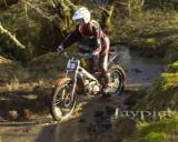 Cwm Woods11.jpg