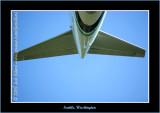 YN6Y1102-copy-b.jpg