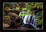 Waterfalls_0058-copy-b.jpg