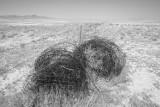 Utah Desert, 2010 B&W