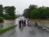 Bellevue Flood