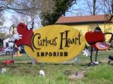 Curious Heart