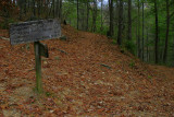 Cooper Road Trail