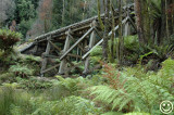 DSC_0262 Trestle bridge Tasmania.jpg
