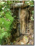 Wales437.jpg