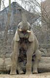 Zoo 09 080.jpg