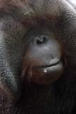 Zoo 09 181.jpg