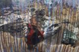 Hundertwasserized