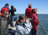 Gallery: Harbour Porpoise Survey - Oosterschelde - 22-05-2009