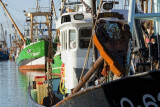 Ostend fishing harbour