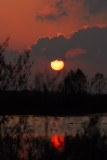 sunset unit 30