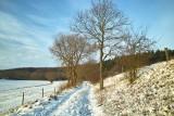 Winter 2010/11