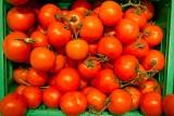 Organic/Bio Tomatoes