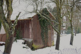 Aged Garden  Shed