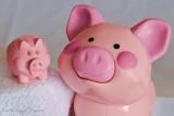 #1   -  Piggies