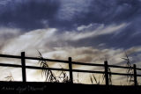 Fence and Clouds