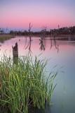 Loch Luna Reserve Sunset
