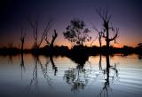 Murray River Lagoon Sunset