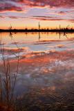 Paringa Sunset