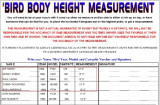 BIRD HEIGHT MEASUREMENTS PG2.jpg