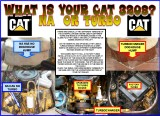 WHAT IS YOUR CAT 3208? NA OR TURBO