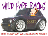 wild_hare_racing_land_speed_racing_rabbit