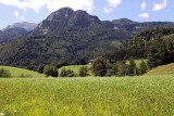 145_Alpbach_09.JPG