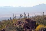 065_Tucson.JPG
