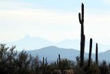 091_Tucson.JPG