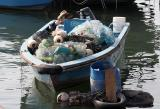 Recycling boat?