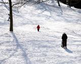 Central Park - figures in a landscape