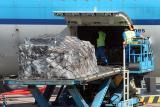 More baggage ingesting