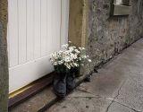 Flower pot?