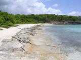 Great Bird Island