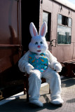 The Easter Bunny relaxes after a hard day.