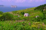 L'île Bonaventure et  Rocher - Percé