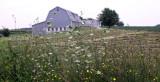 grey barn with flowers