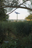 Bird sculpture through the trees