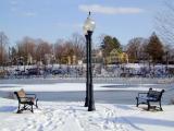 trinity park... with winter birds...