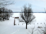 can't find the lake for the snow...