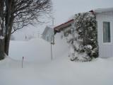 Ma neige